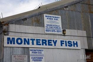 Monterey  003
