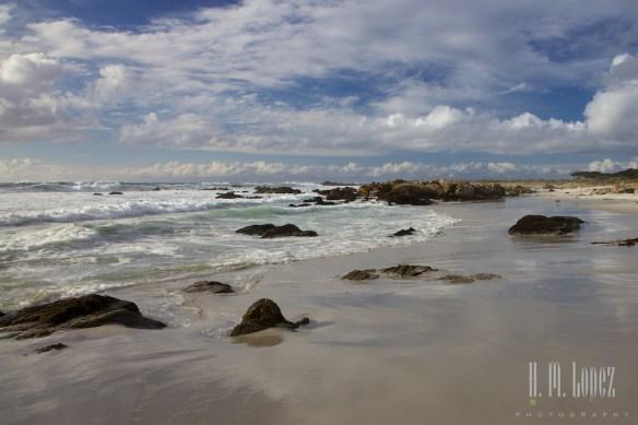 Monterey  010