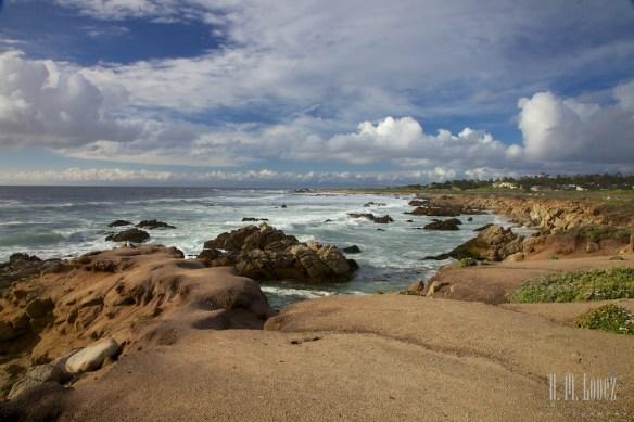 Monterey  011
