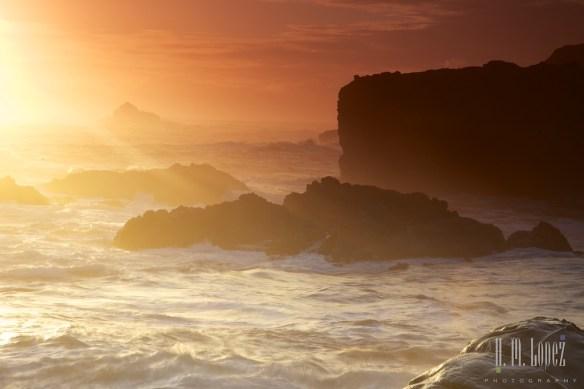Point Lobos  045