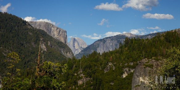 Yosemite Valley  020