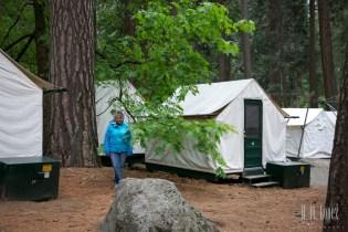 Yosemite Valley  081