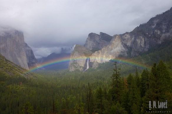 Rainbows  035