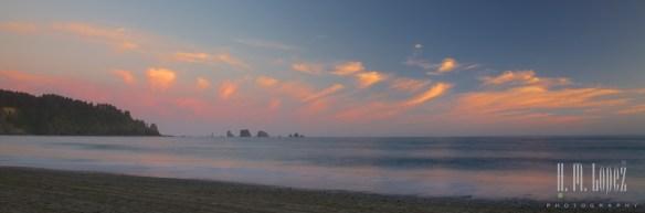 Olympic Coast  043