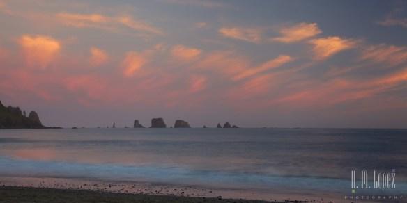 Olympic Coast  044
