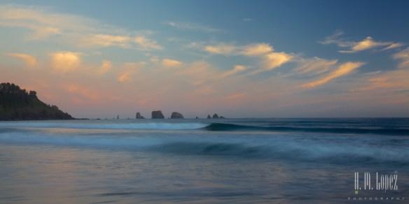 Olympic Coast  045