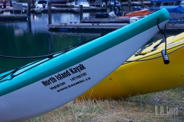 Telegraph Cove Kayak  002