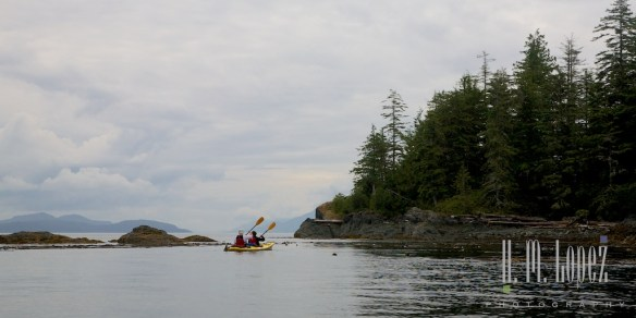 Telegraph Cove Kayak  025