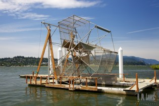 A salmon fishing device