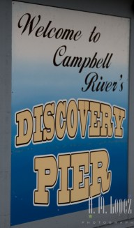 Campbell River  011