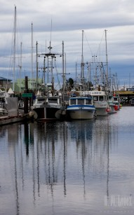Campbell River  016