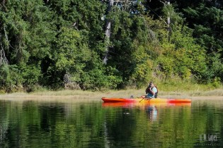 Campbell River  091
