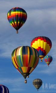 Balloons  164