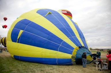 Balloons 239