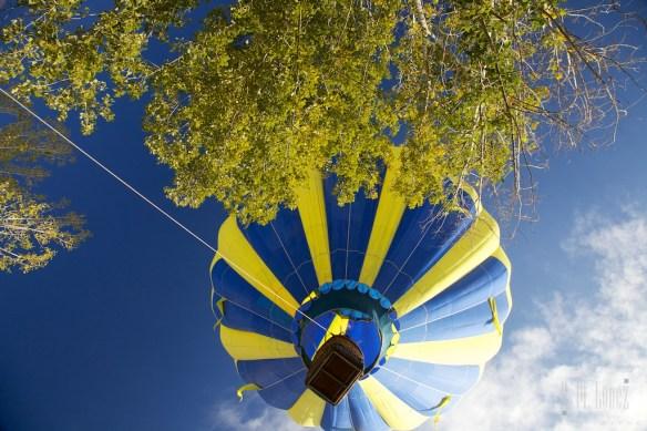 Balloons  297