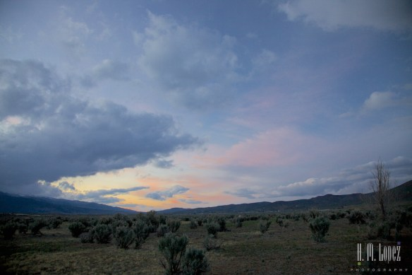 Tahoe022