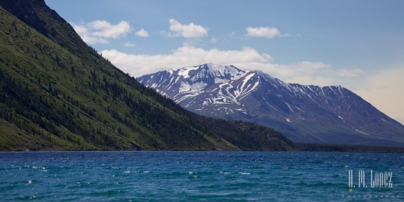 Haines Junction008