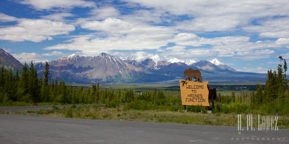 Haines Junction019