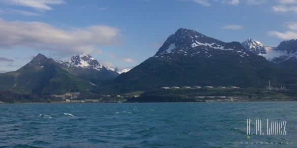Prince William Sound104
