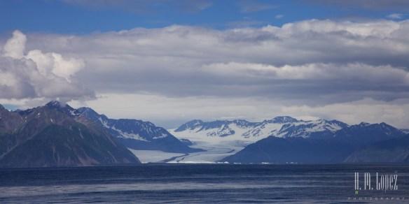 Kenai Fjords NP 56