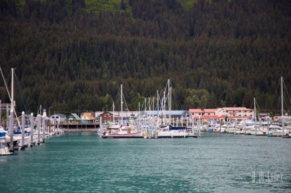 Kenai Fjords NP 92