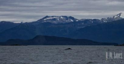 Juneau 17
