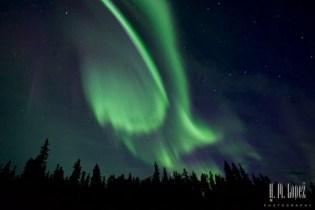 Squanga Aurora 9