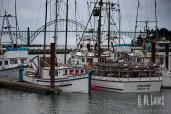 Newport-29