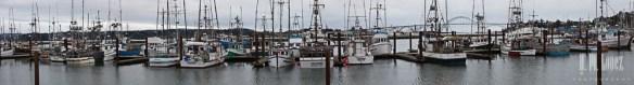 Newport-31