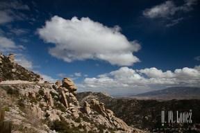 Tucson-83