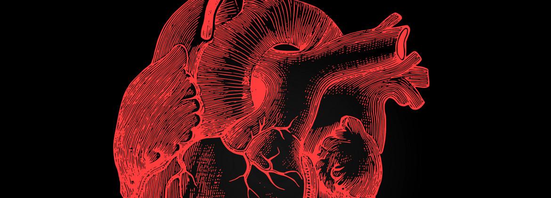 heart function clinics heart