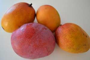 pile of mangos