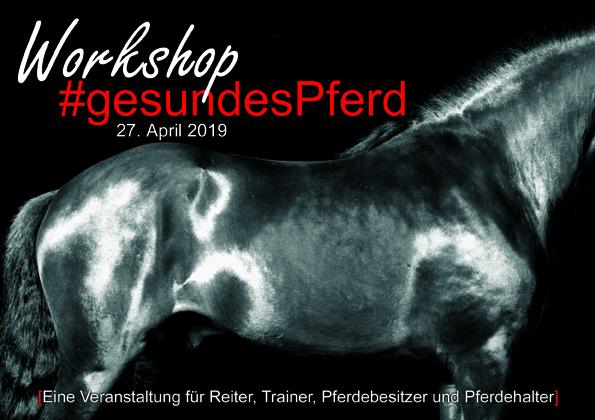 Workshop gesundes pferd Internet