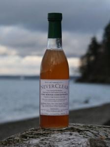 neverclear on the beach