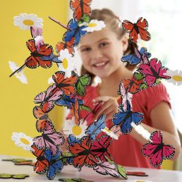 connectagons butterflies