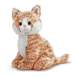 pumpkin tabby cat