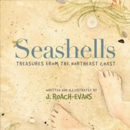 seashells book from islandport press