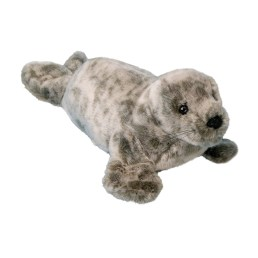speckles monk seal