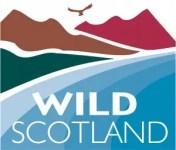 wildcol