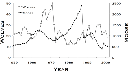 small resolution of five decades of wolf moose dynamics