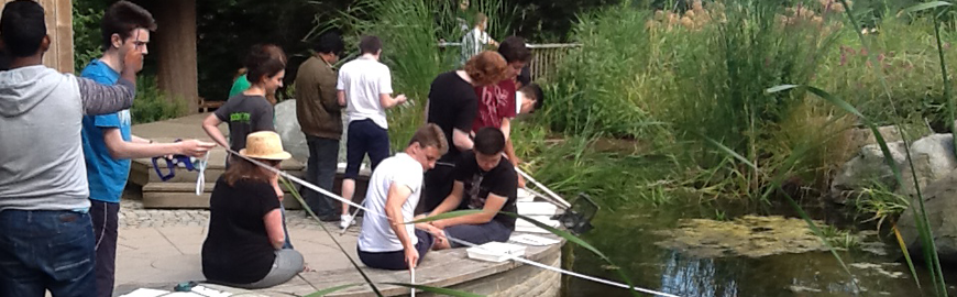 AS-Level Biology Students Go Pond-Dipping
