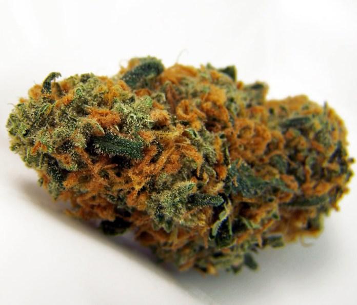 , Cannabis Strain Spotlight: Strawberry Cheese