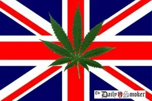 , Will Your Country Ever Decriminalise / Legalise Cannabis?