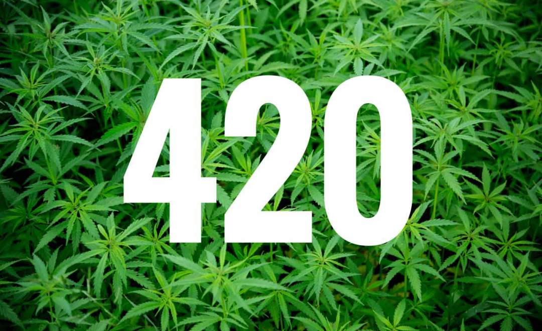 , Tomorrow is April 20th : How Are You Celebrating 420 2016?