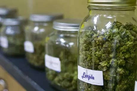 , Here's What You Should Know About Barcelona Cannabis Clubs, ISMOKE