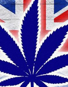 Uk cannabis prices also are going up and this is what   causing it ismoke rh ismokemag