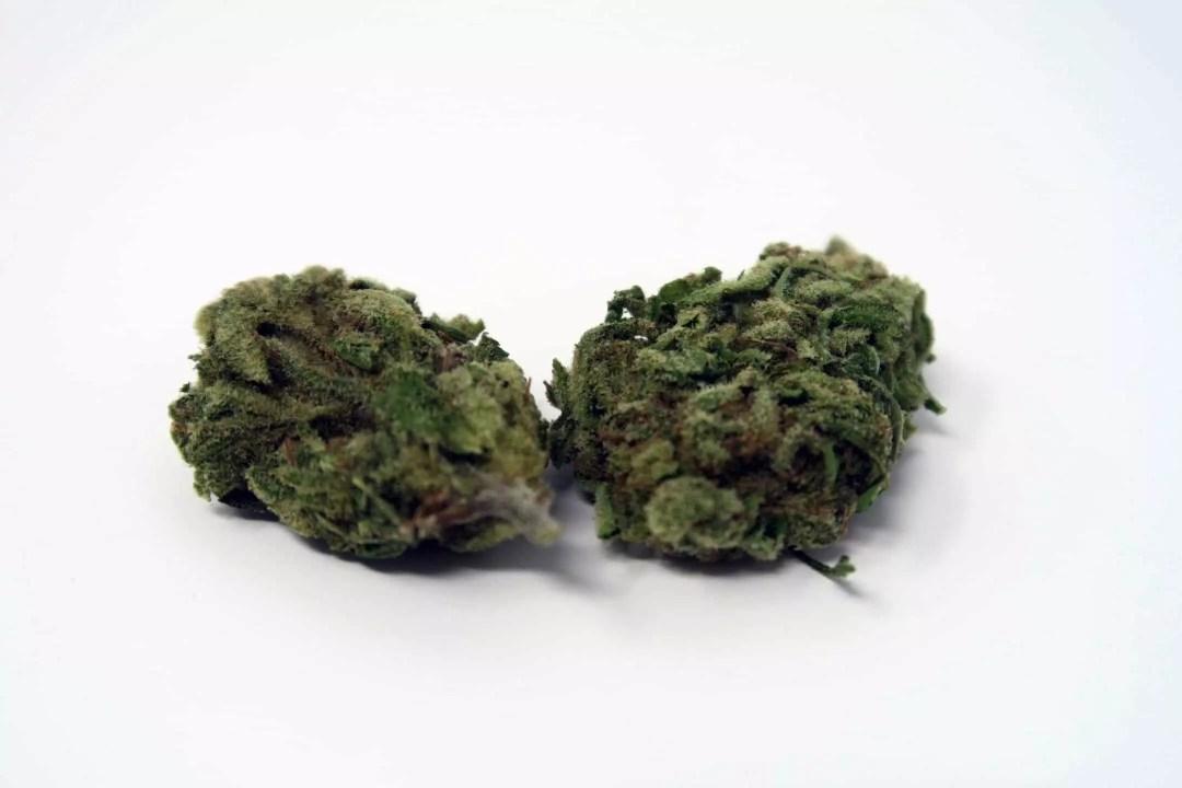 Green Kiss, Green Kiss Cannabis Strain Review, ISMOKE