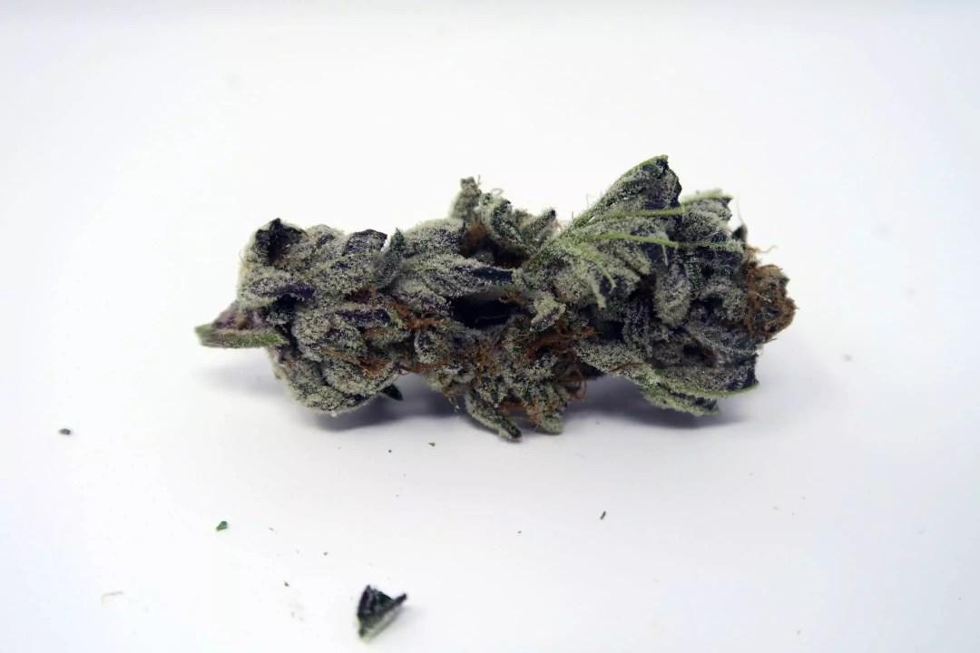 strawberry crusha, Strawberry Crusha Weed Report, ISMOKE