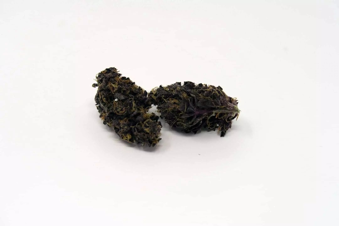 Blackberry Kush, Blackberry Kush Cannabis Strain Information & Review, ISMOKE