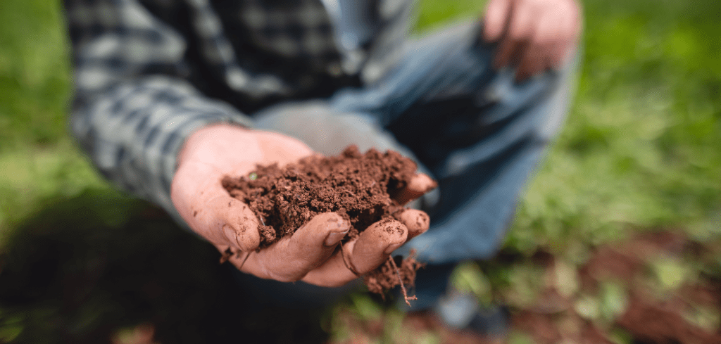 why might soils rich in organic matter not be fertile